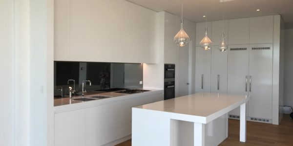 Milson Point open plan kitchen overview