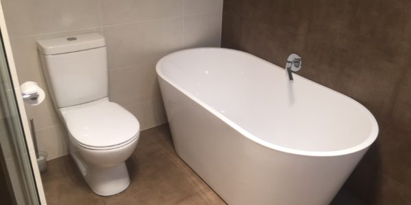 bathroom bowl and bathtub