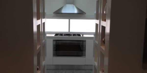 Badel custom counter and hood project